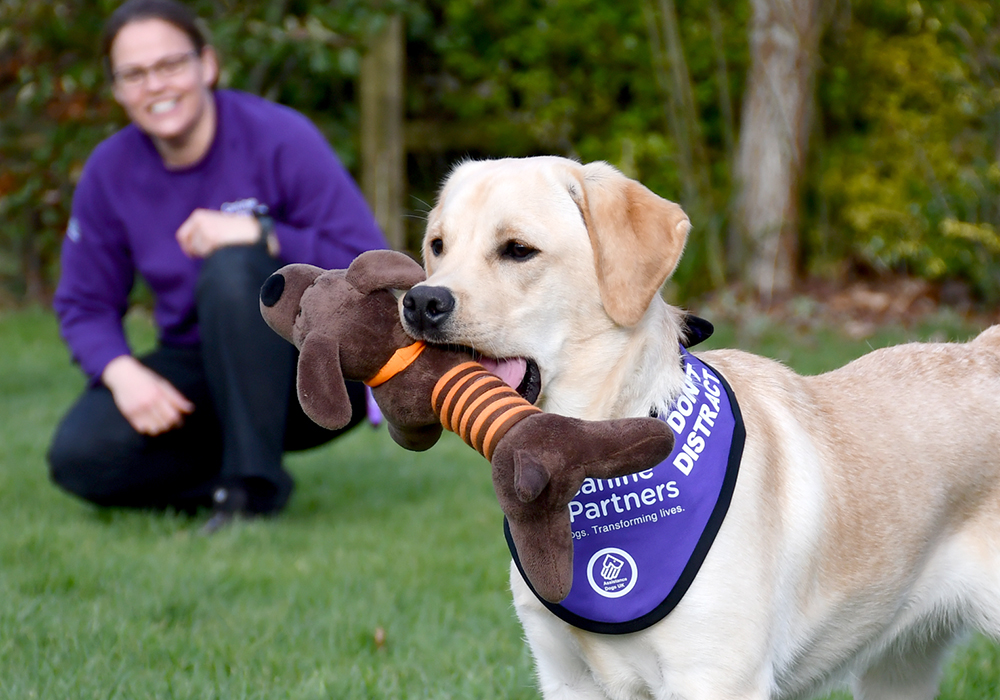 Pets Corner Raise over £107,000 in 7 years of Canine Partners Charity Partnership