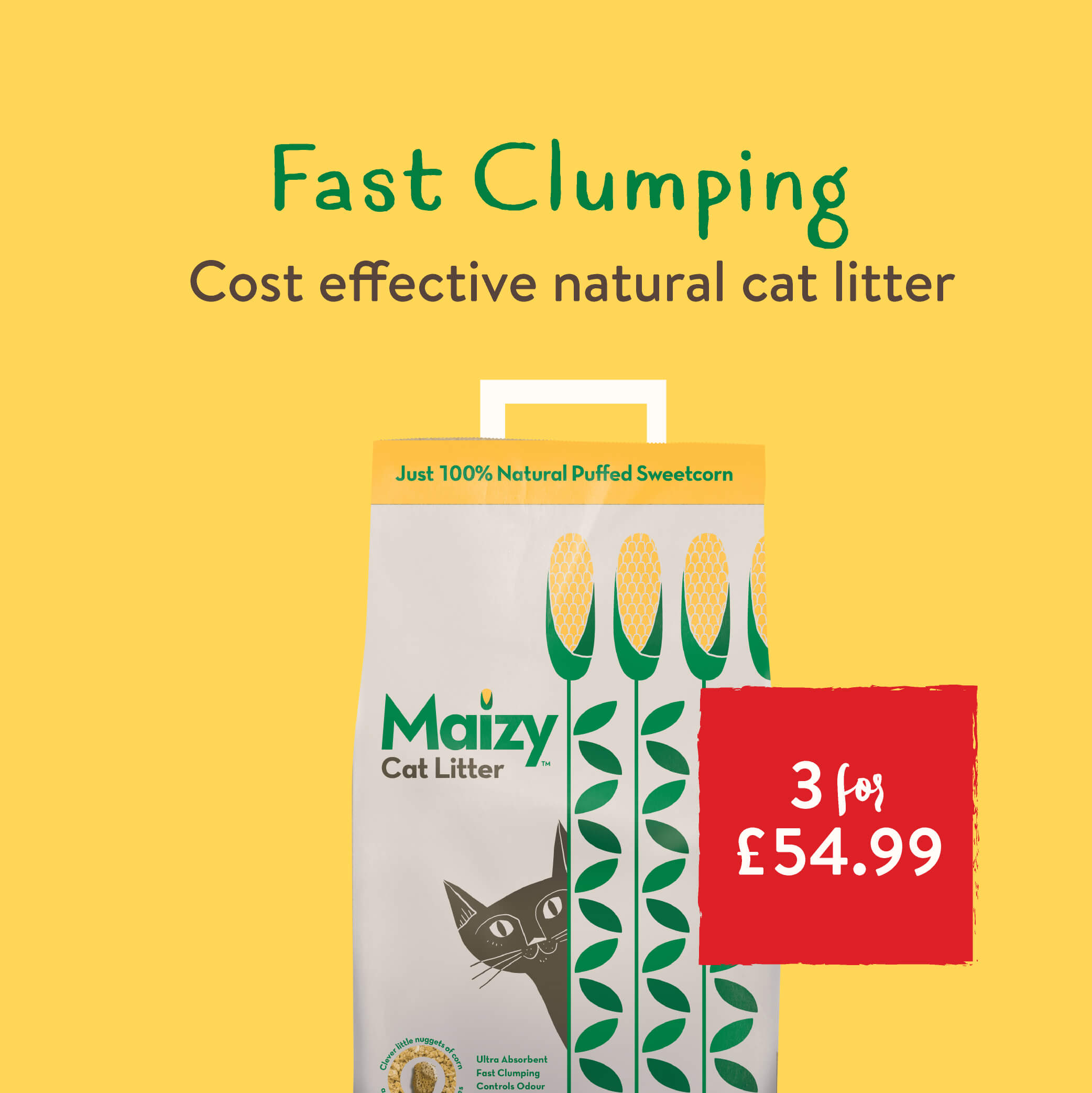3 for £54.99 with FREE next day delivery on Maizy Cat Litter