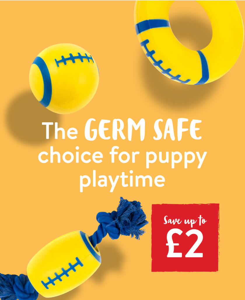 Save up to £2 on the Great&Small Clean Catch dog toys