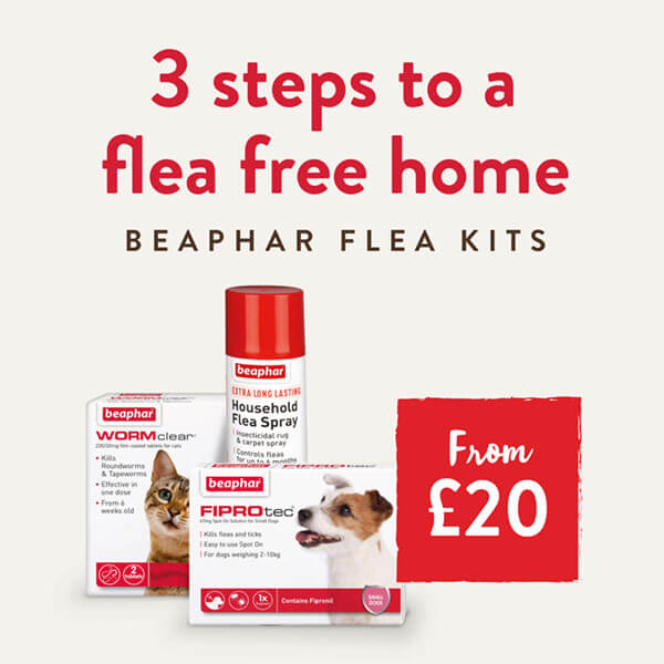 3 Steps to a flea free home with our Beaphar Flea Kits.