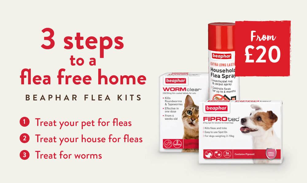 3 Steps to a flea free home with our Beaphar Flea Kits.