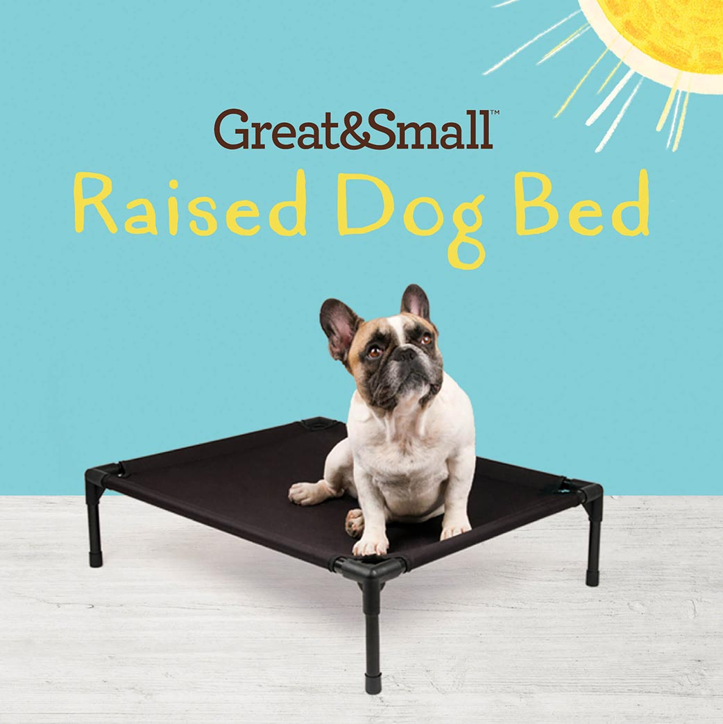 Great&Small Raised Dog beds – Super comfy and raised off the ground.
