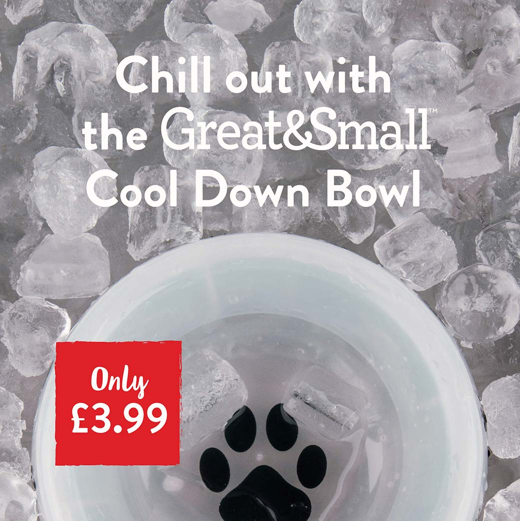 Chill out with the Great&Small Cool Down Bowl.