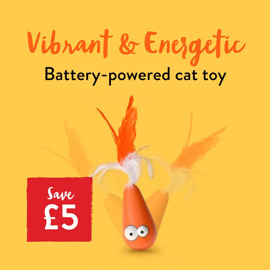 Vibrant and energetic cat toy.