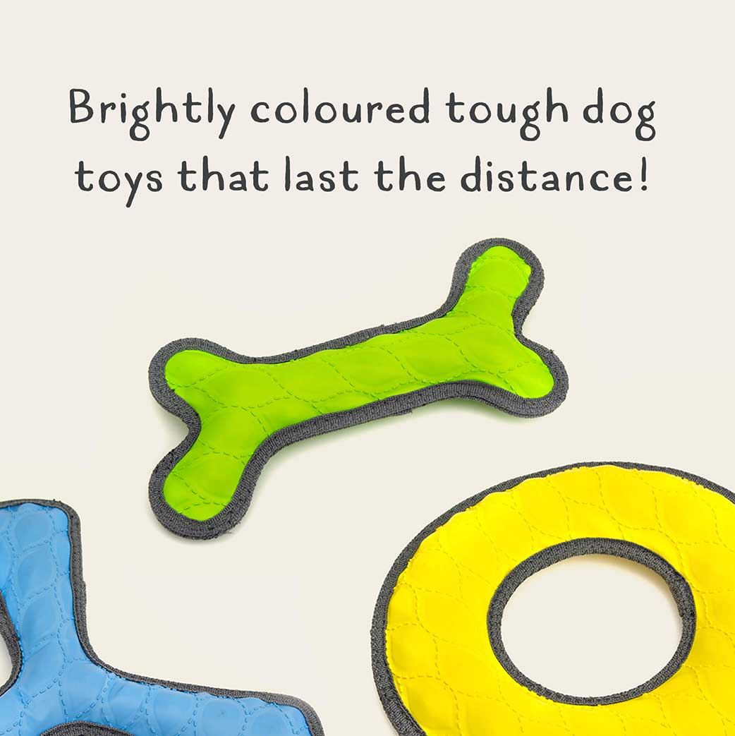 Brightly coloured tough toys that last the distance.