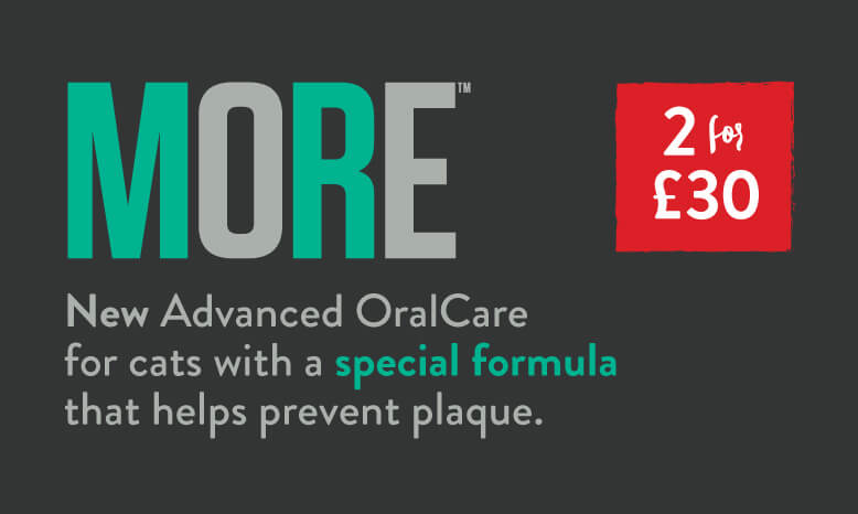 MORE Cat Oral Care. 2 for £30.