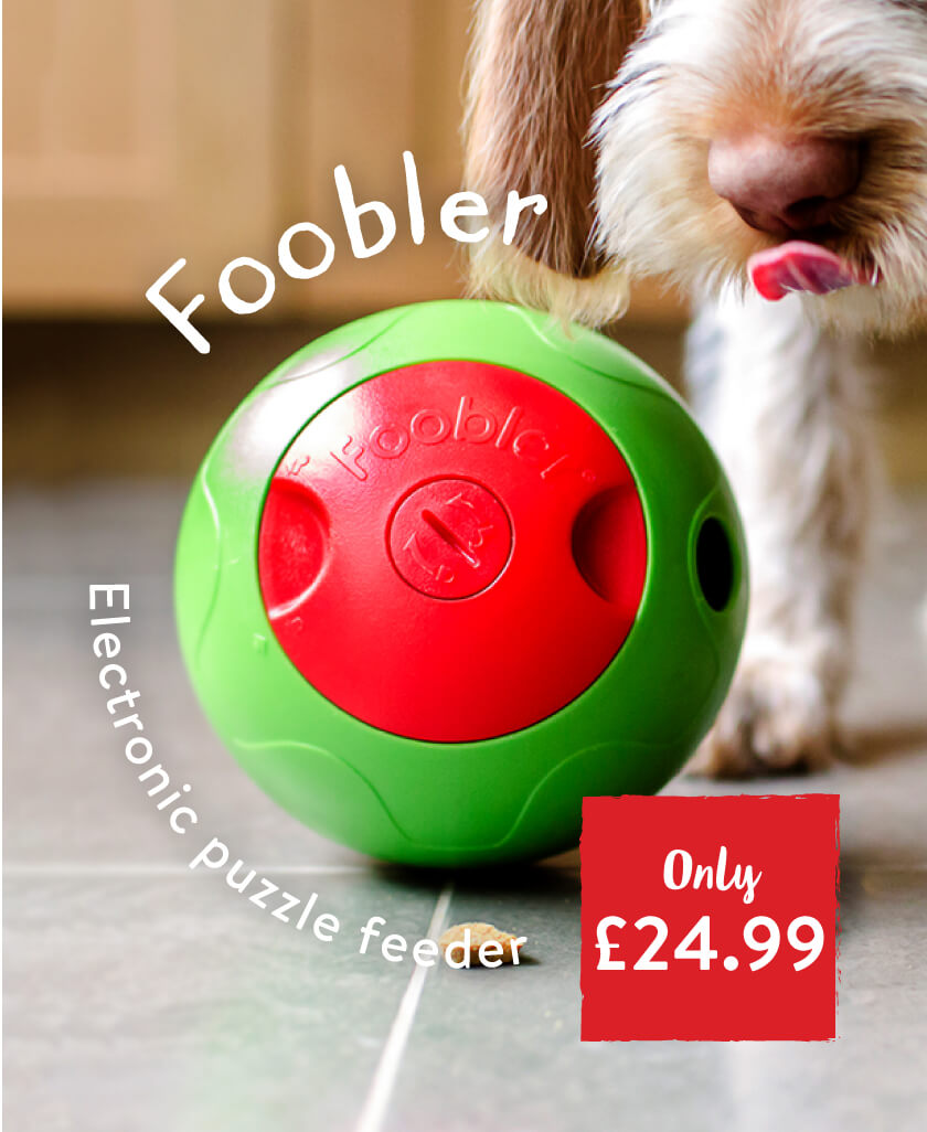 Foobler Electronic Treat Ball.