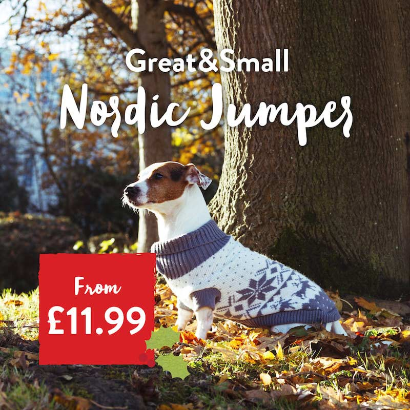 Great&Small Christmas jumper