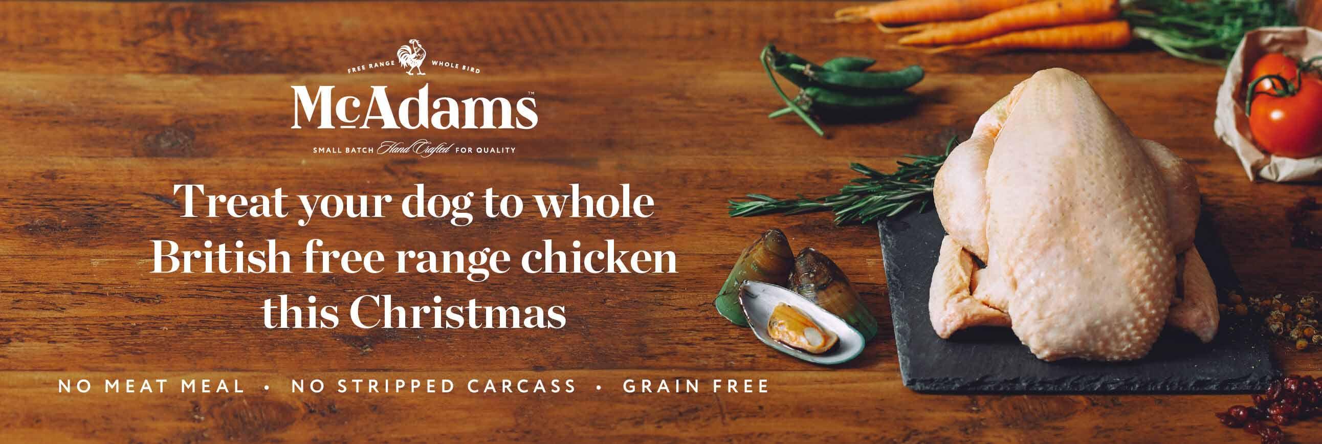 McAdams for Xmas