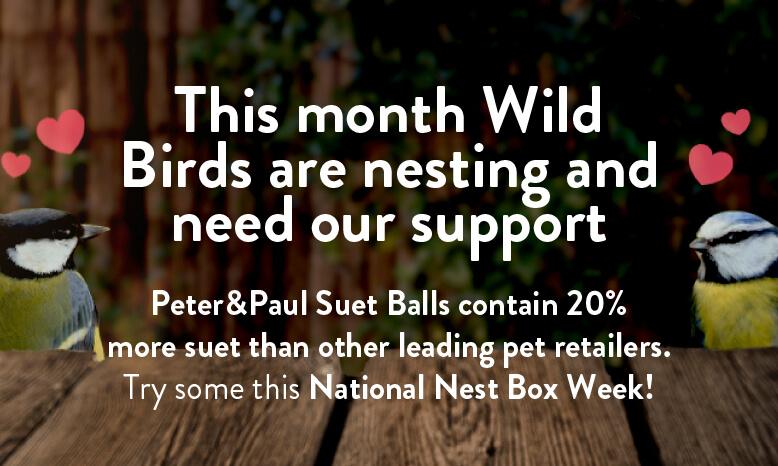 Wild Birds Suet Balls