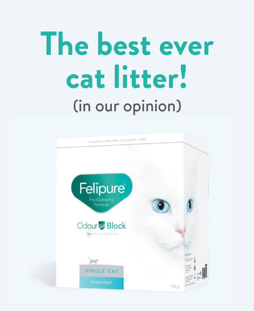 Felipure Cat Litter