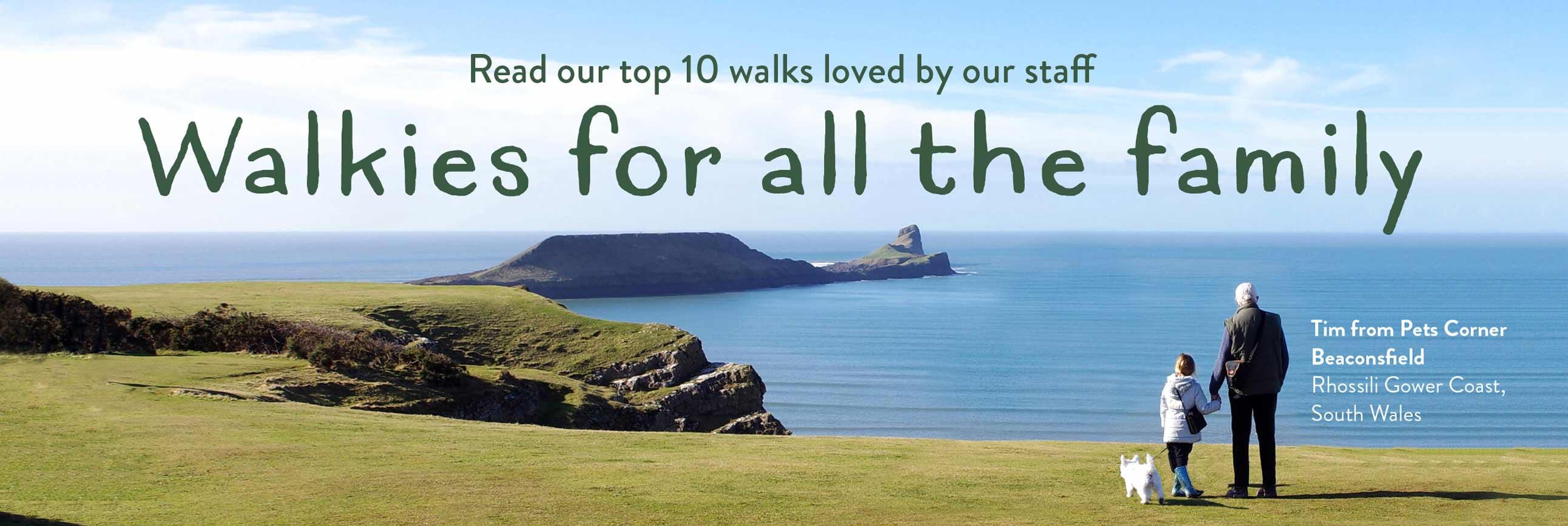 Top 10 Staff Dog Walks
