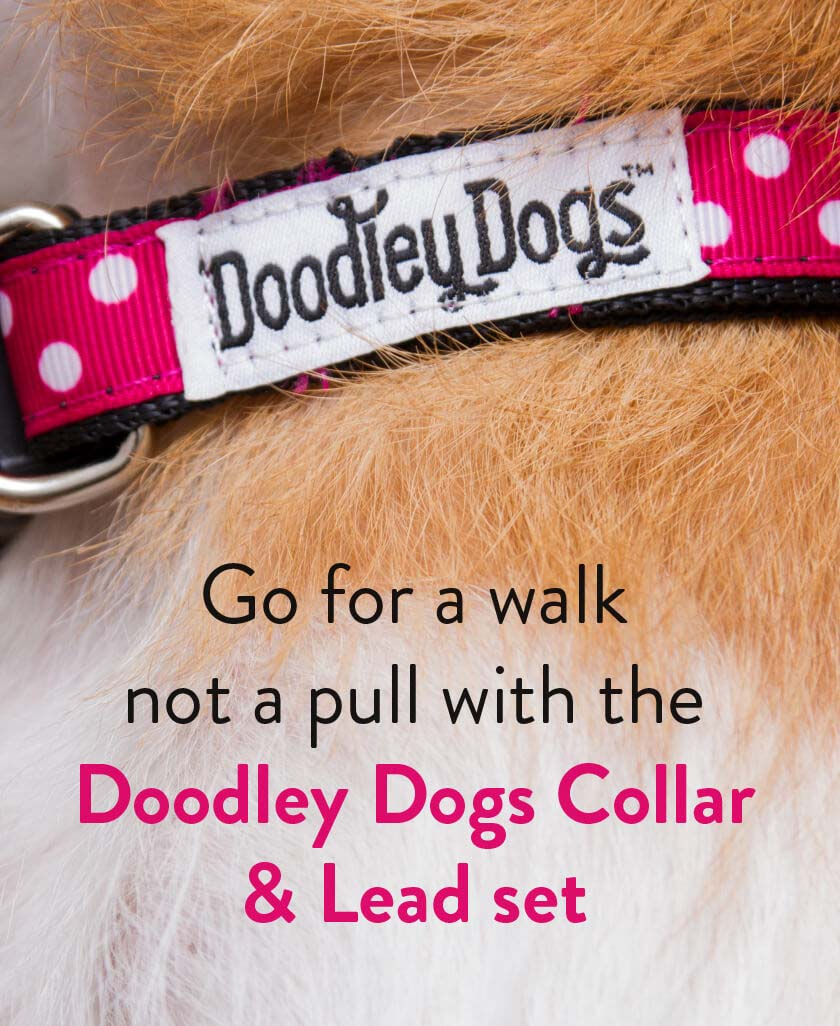 Doodley Dogs Leads and Harnesses