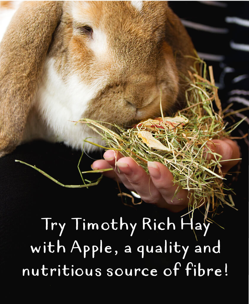 Try Timothy Rich Hay with Apple, a quality and nutritious source of fibre!