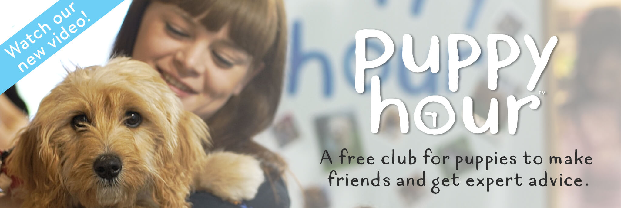 Puppy Hour - A free club for puppies to make friends and get expert advice