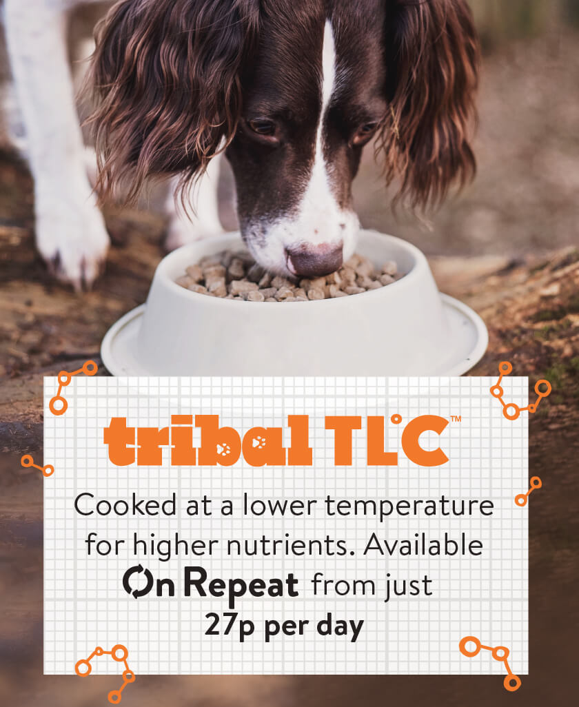 Tribal TLC - cooked at a lower temperature for higher nutrients. Available On Repeat from just 27p per day