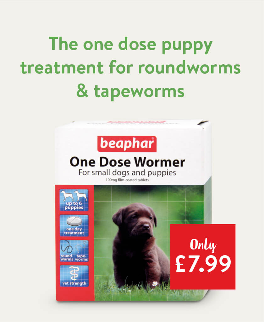 The one dose puppy treatment for roundworms and tapeworms - only £7.99