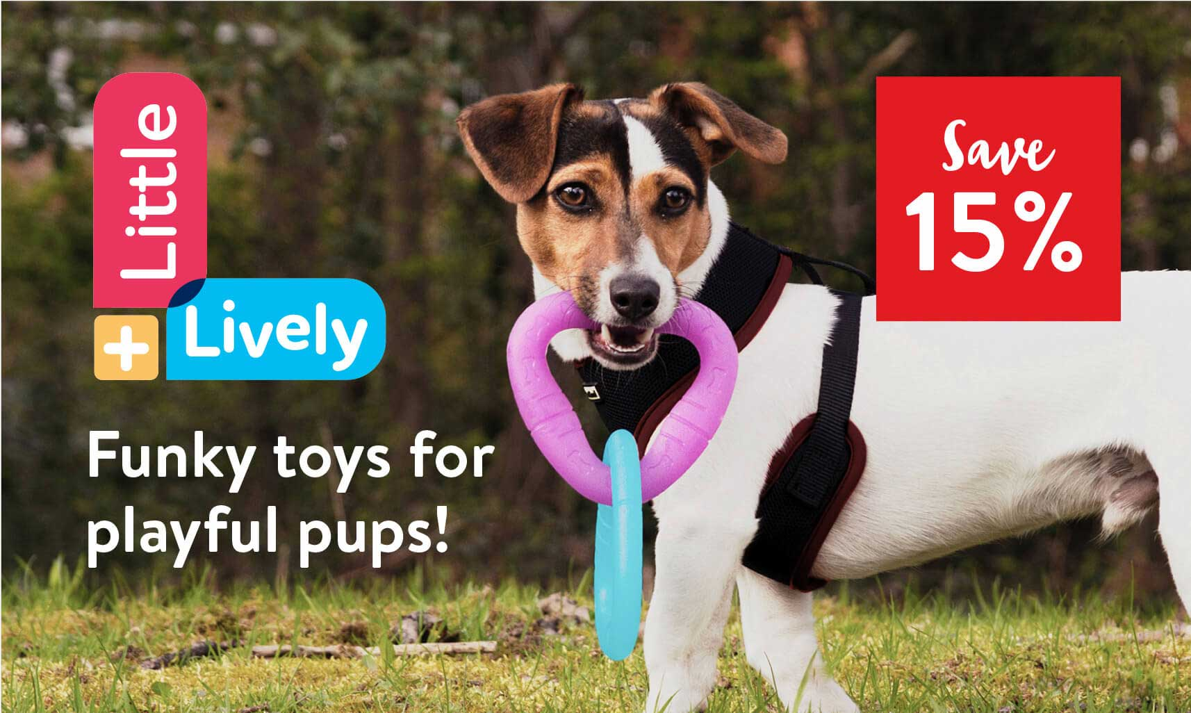 Little and Lively - Funky toys for playful pups! Save 15%