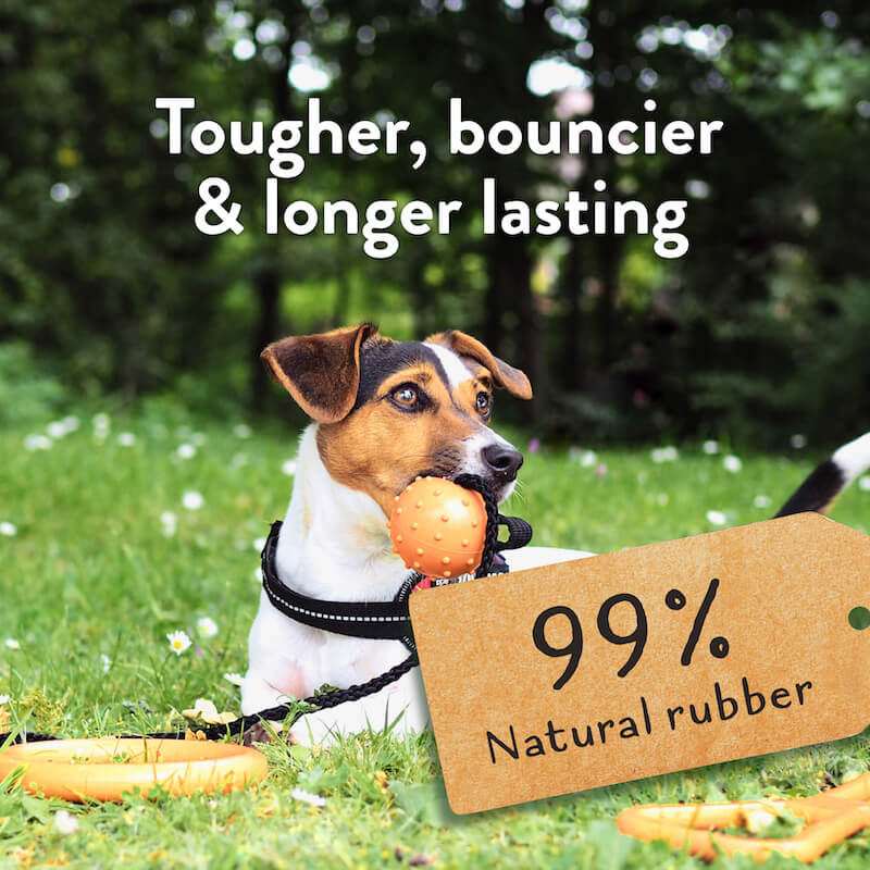 Great&Small 99% Natural Rubber Toys