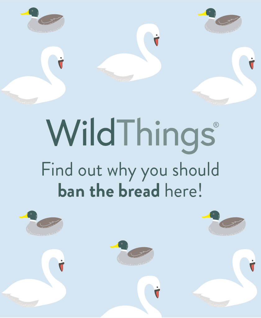Wild Things Ban the Bread