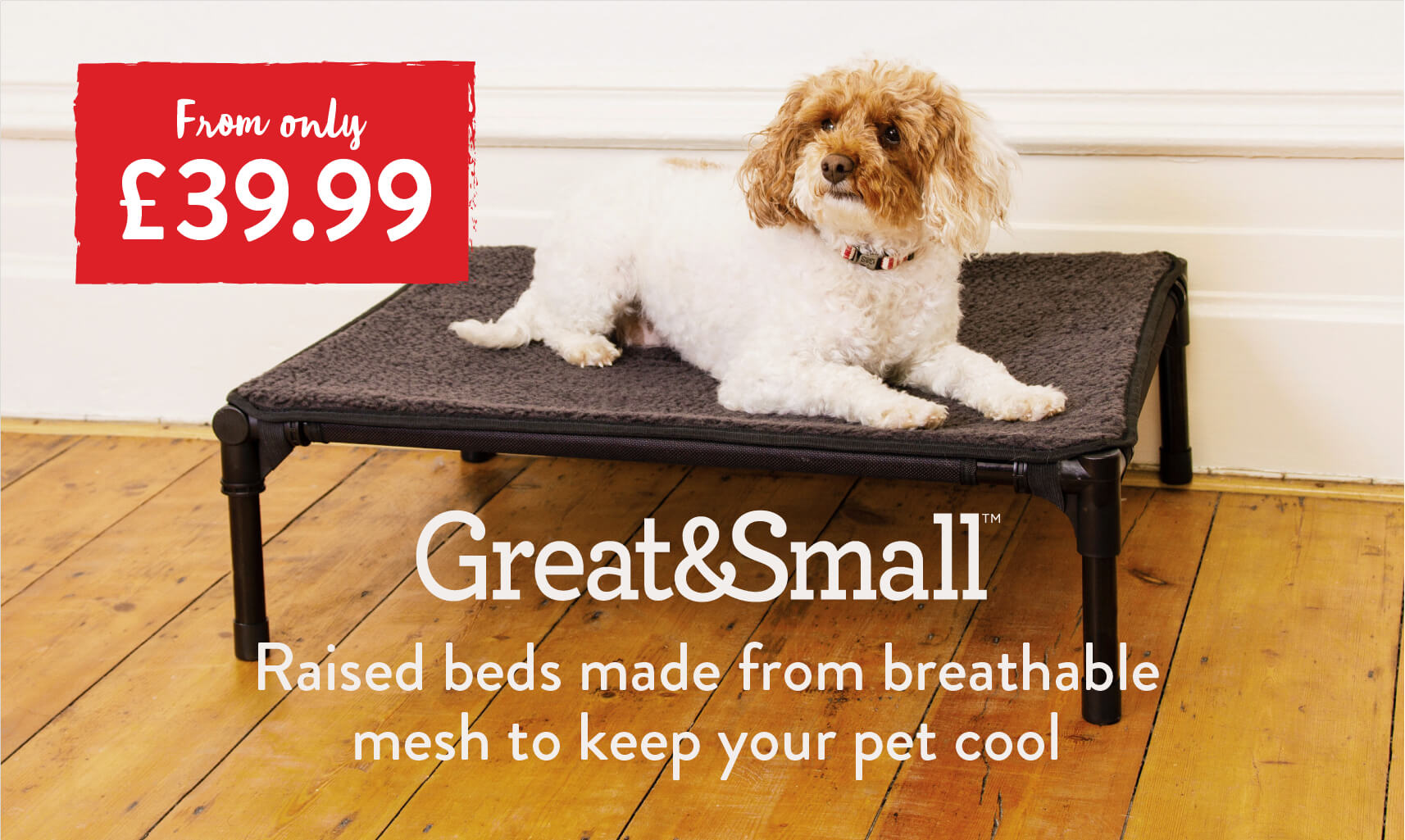 Great&Small Raised Dog Beds