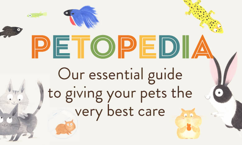 Learn something new with PETOPEDIA. Our essential guide to giving your pets the very best care