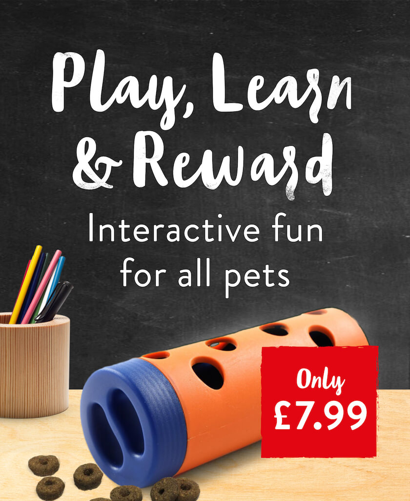 Play, Learn & Reward. Interactive fun for all pets