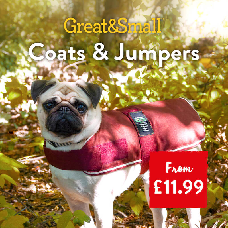 Great&Small - Coats & Jumpers