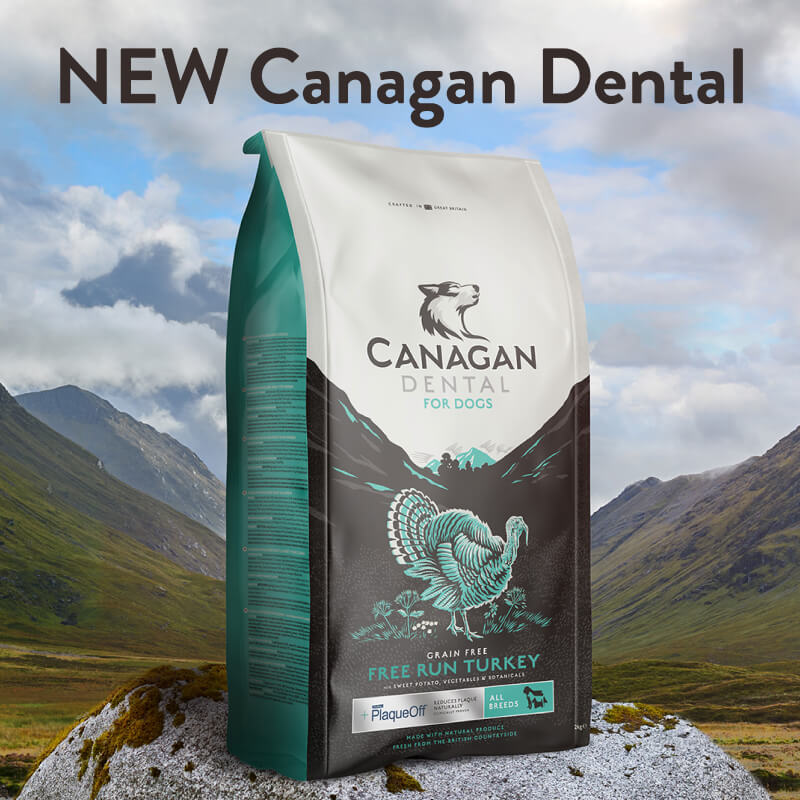 NEW Canagan Dental. Cleaner teeth for dogs or your money back ( if fed for 1 month )