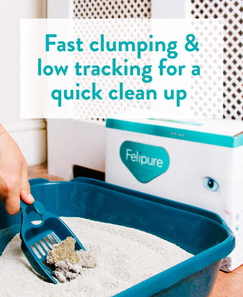 Fast clumping & low tracking for a quick clean up