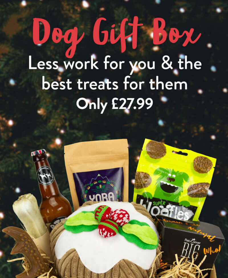 Dog Gift Box. Less work for you & the best treats for them. Only £27.99