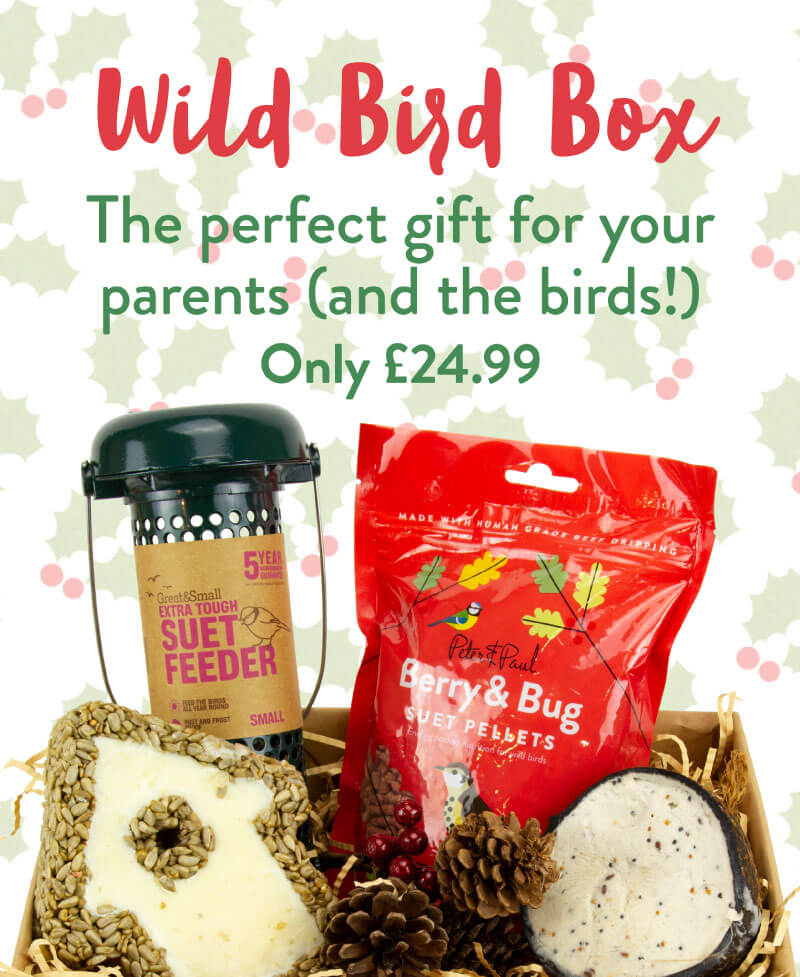Wild Bird Box. The perfect gift for your parents (and the birds!). Only £24.99