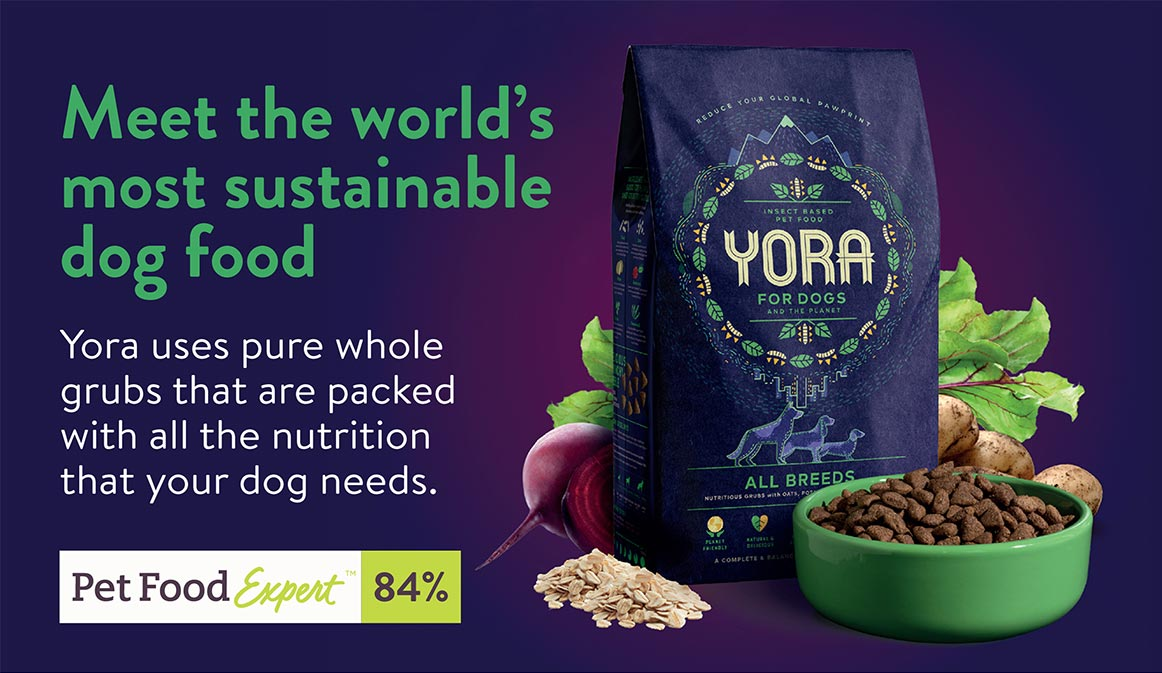 Meet the world's most sustainable dog food