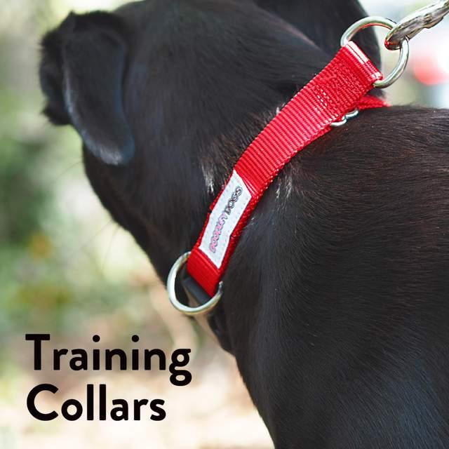 Training Collars