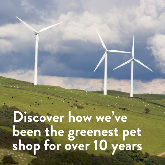 We've been the greenest pet shop for over 10 years. Discover our ethical choices and plans for the future