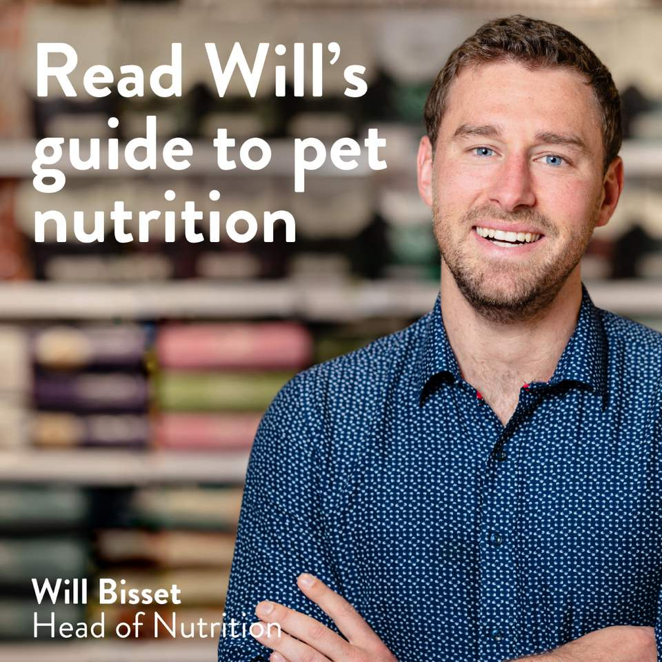 Read Will's guide to pet nutrition