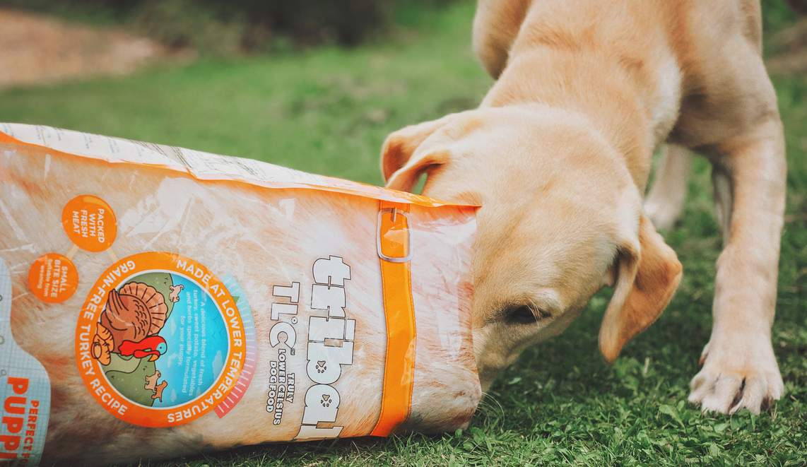 Tribal. Cold Pressed & Meat Meal Free. Dry dog food for sensitive tummies