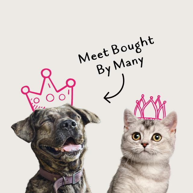 Bought By Many Pet Insurance