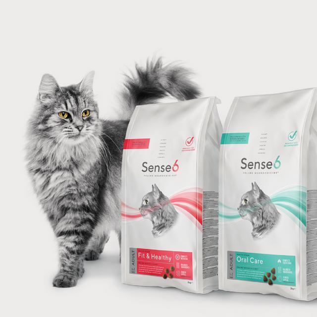 Sense6 Cat Food