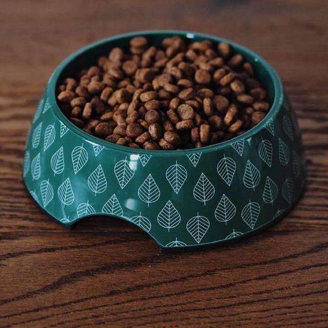 New Feeding Bowls