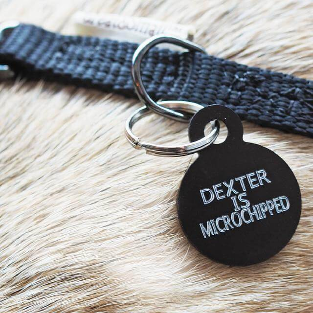 ID Tags Engraving. Custom ID tags delivered next day