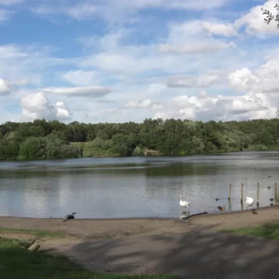 Brereton Lake, Congleton